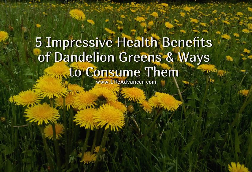 dandelion greens health benefits